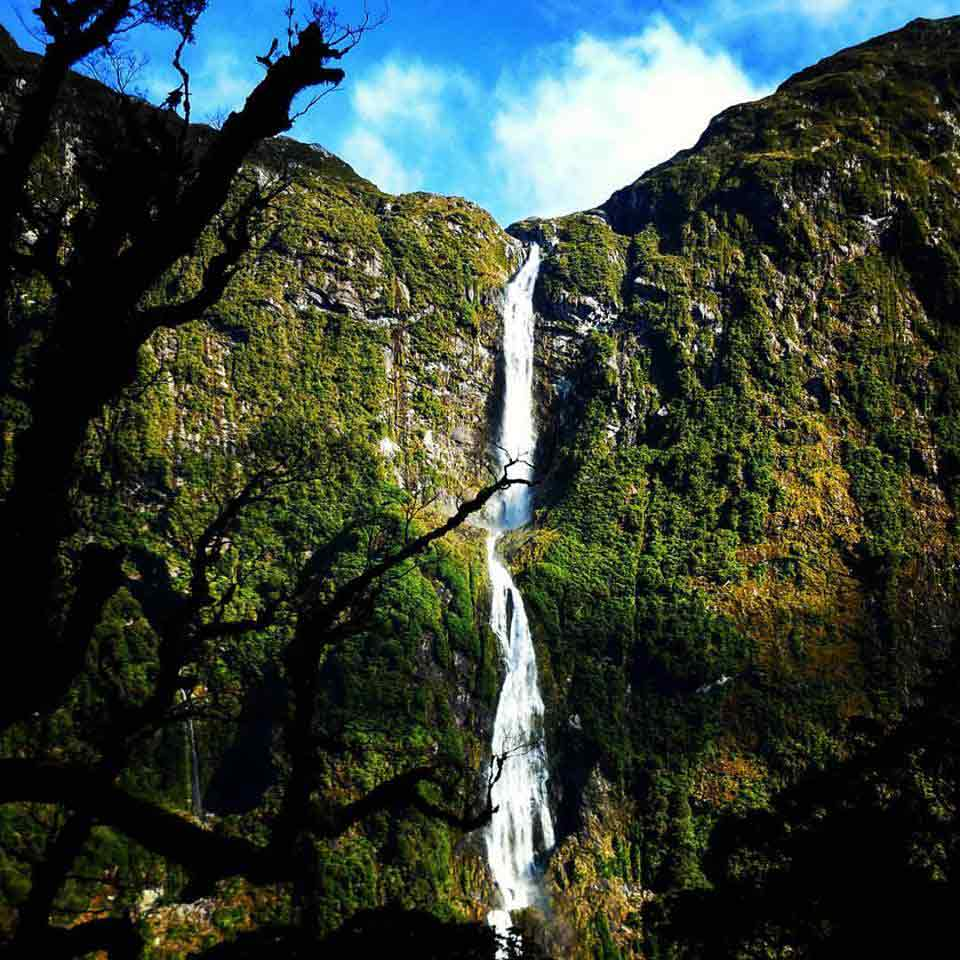 milford track waterfall